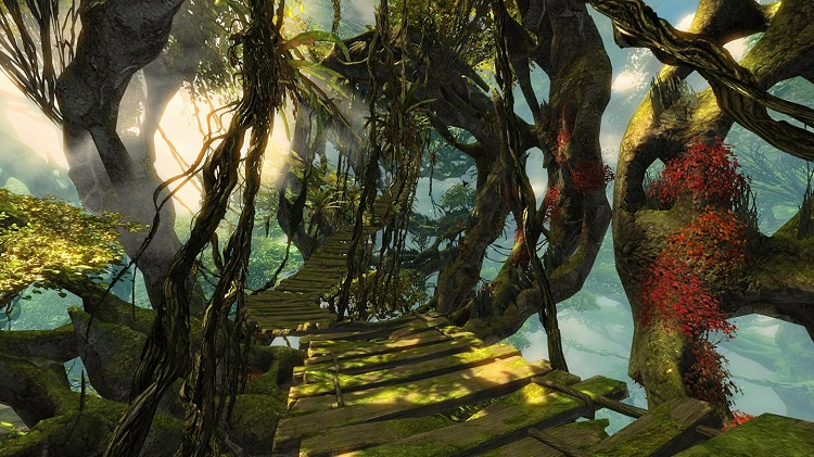 Gw2 HoT Jungle Bridge